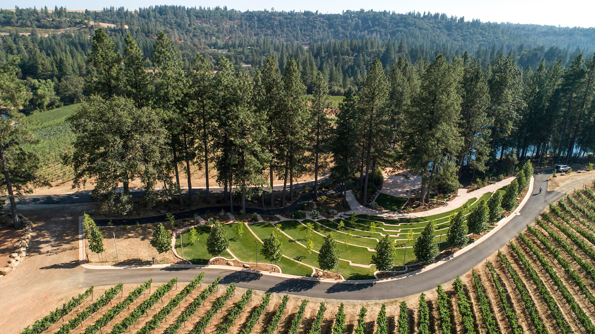 Amphitheater and Vineyard Rows