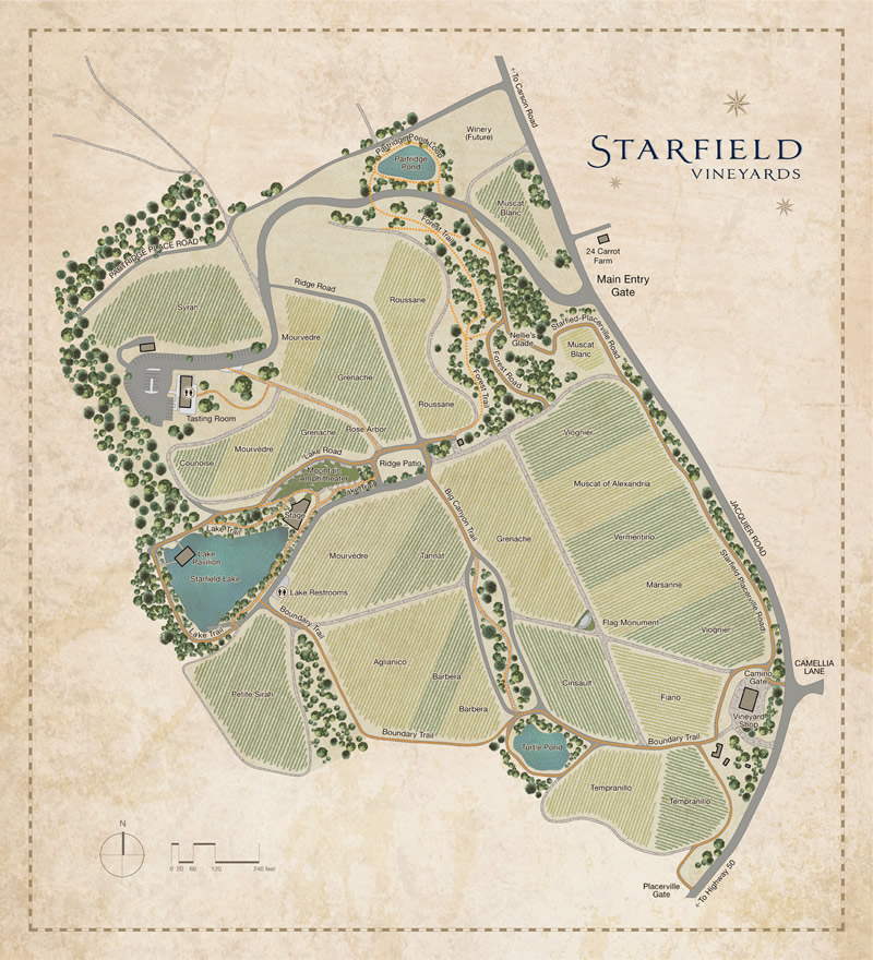 Starfield Vineyards Map